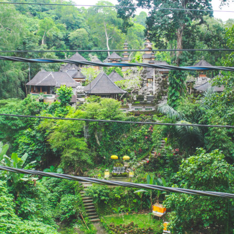 Ubud: Center + Monkey Forest