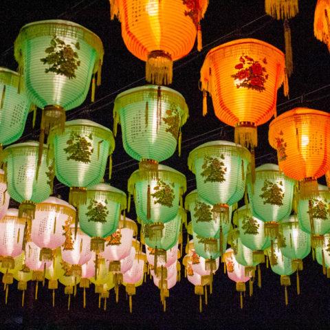 Murasaki Mura Ryukyu Lantern Festival
